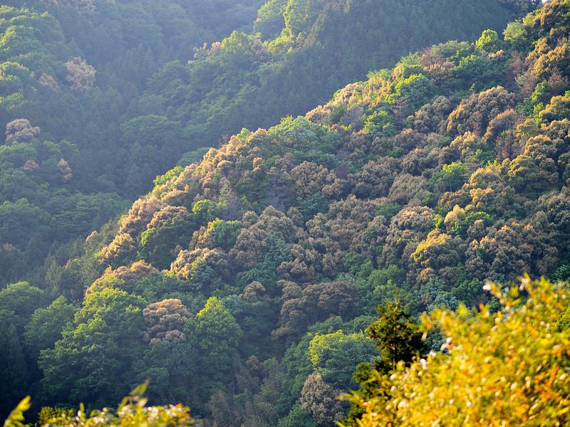 Spektakuläre  Landschaft auf dem Weg nach oben